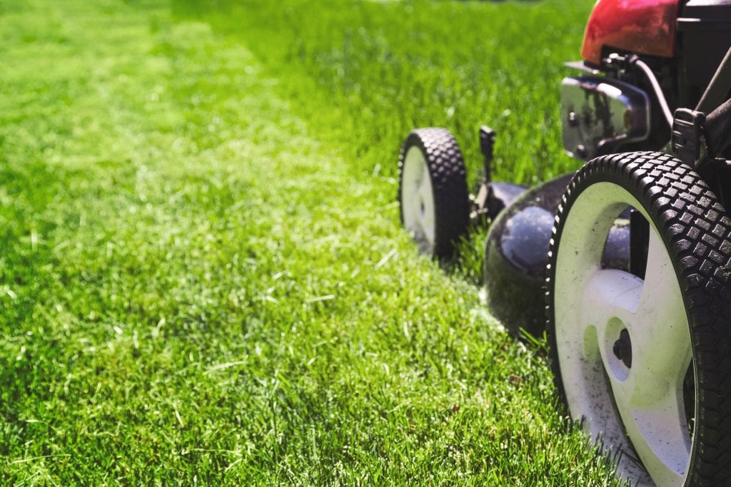 lawn mowing business growth strategy